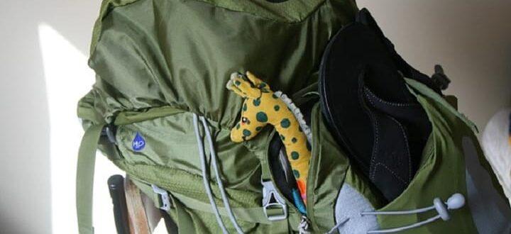 Ручная кладь в самолете, рюкзак с жирафом.