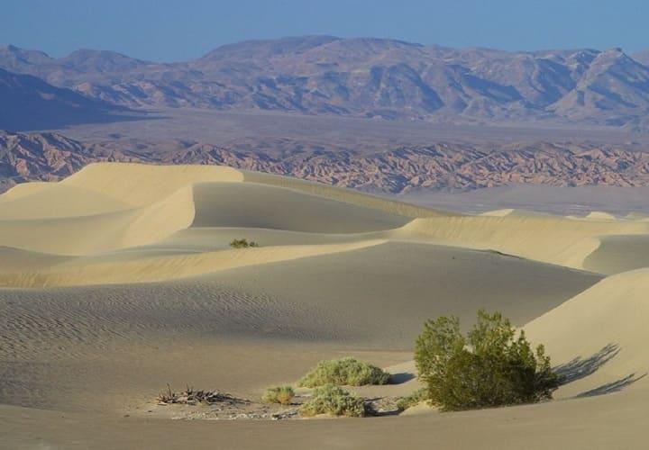 Самая жаркая пустыня Мохаве